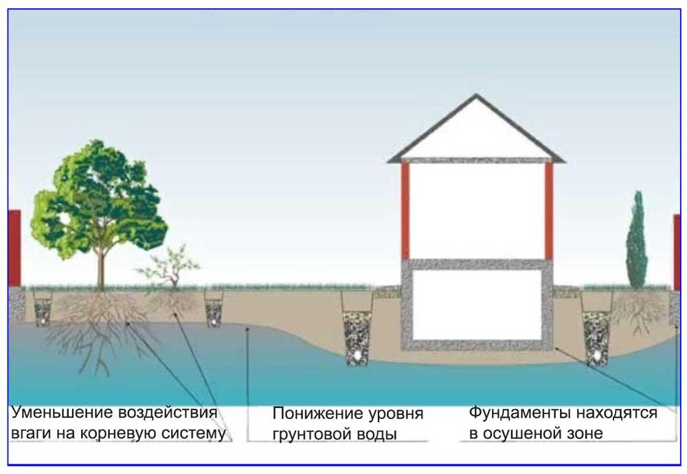 Схема дренирования для снижения уровня грунтовых вод.